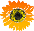 Sunflower3_Flower_Clipart_Pictures